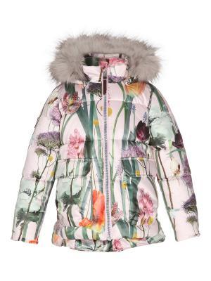Куртка Molo. Цвет: розовый