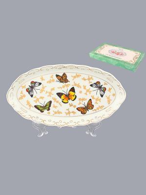 Селедочница Бабочки Elan Gallery. Цвет: белый, коричневый, желтый