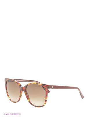 Солнцезащитные очки GUCCI. Цвет: бордовый