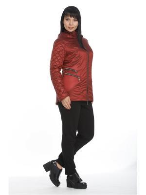 Куртка Асти Notte Bianca. Цвет: бордовый