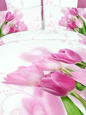 Постельное белье Buenas Noches. Цвет: белый, зеленый, розовый