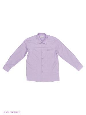 Рубашка Cleverly. Цвет: сиреневый, серебристый