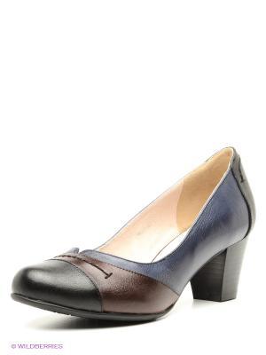 Туфли Covani. Цвет: коричневый, черный, синий