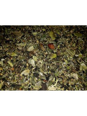 Иван-чай Таежный. Цвет: сливовый, темно-бежевый
