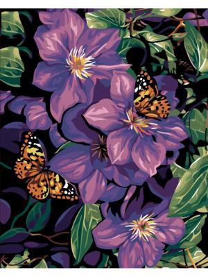 Наборы для рисования Бабочки на фиолетовых цветах Menglei. Цвет: белый