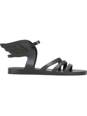 Сандалии Ikaria Jelly Ancient Greek Sandals. Цвет: чёрный