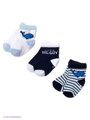 Носки, 3 пары PERA MAYA. Цвет: темно-синий, светло-голубой, белый