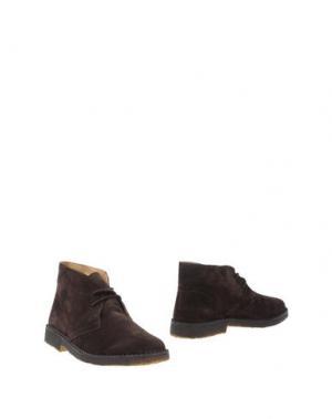 Полусапоги и высокие ботинки STOKTON. Цвет: темно-коричневый