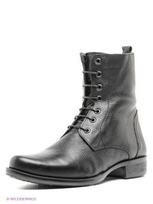 Ботинки WAYKO. Цвет: черный