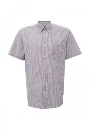 Рубашка OVS. Цвет: фиолетовый
