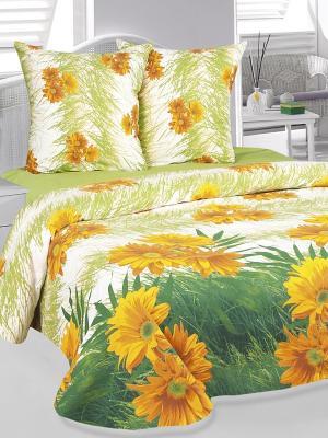Комплект постельного белья Герберы Тет-а-Тет. Цвет: зеленый, оранжевый
