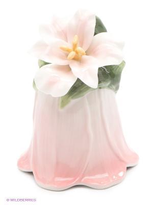 Колокольчик Райский цветок Pavone. Цвет: розовый, белый, зеленый