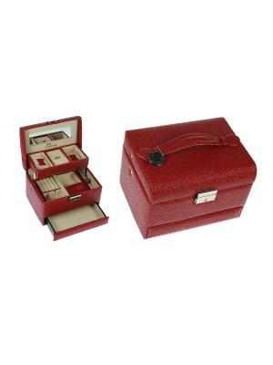 Шкатулка для ювелирных украшений CALVANI. Цвет: бежевый, темно-коричневый