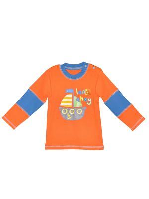 Кофточка ZEBRA KIDS. Цвет: оранжевый