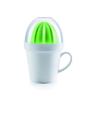 Соковыжималка для цитрусовых Cactus Juicer Donkey. Цвет: белый, зеленый