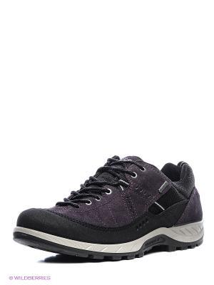 Ботинки ECCO. Цвет: черный, фиолетовый