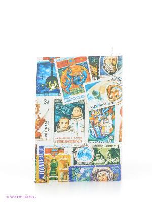Обложка для паспорта Mitya Veselkov. Цвет: синий, желтый, белый