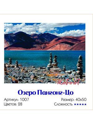 Живопись на холсте Озеро Пангонг-Цо + диск в подарок MantraArt. Цвет: белый