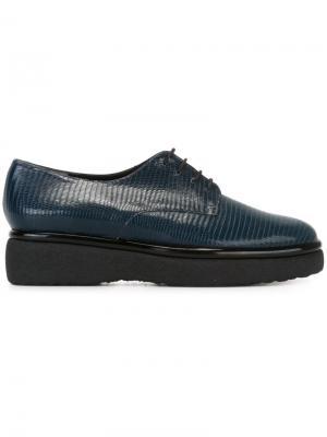 Туфли на шнуровке Fadio Robert Clergerie. Цвет: синий