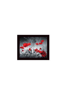 Маки В903 Картина в раме 25х35 PROFFI. Цвет: красный, черный