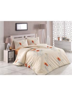 Постельное белье ALTINBASAK.. Цвет: оранжевый, кремовый