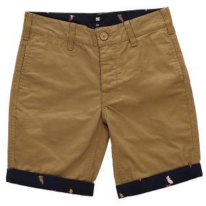Шорты классические детский DC Hidden Gem Boy Khaki Shoes. Цвет: коричневый