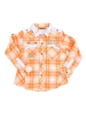 Рубашка Pilota. Цвет: оранжевый
