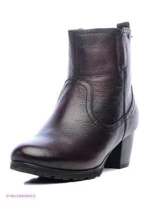 Ботинки Shoiberg. Цвет: бордовый