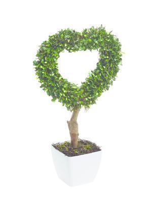 Растение искусственное со светодиодами Gardman. Цвет: зеленый