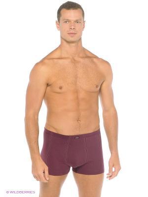 Трусы-шорты мужские Trunk Comazo. Цвет: бордовый