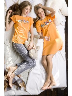 Комплект PELICAN. Цвет: оранжевый