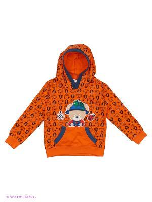 Худи Sago Kids i Ant Domain. Цвет: оранжевый