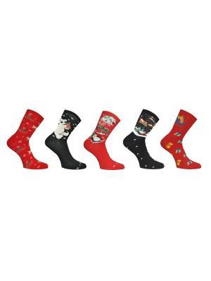 Носки 5 пар Master Socks. Цвет: темно-красный, антрацитовый