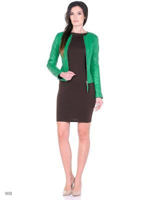 Кожаная куртка SUSSEX. Цвет: зеленый