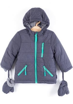 Куртка Coccodrillo. Цвет: серый (графитовый серый)