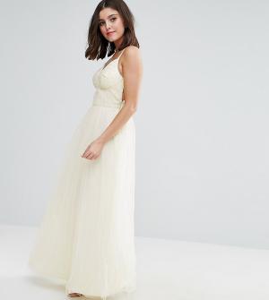 Chi London Petite Платье макси для выпускного с тюлевой юбкой. Цвет: кремовый