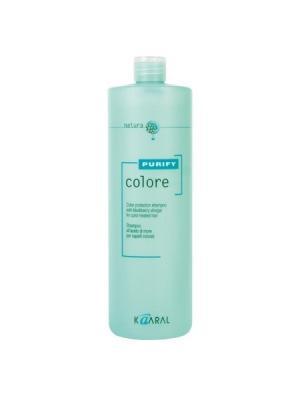 Purify Шампунь для окрашенных волос на основе фруктовых кислот ежевики Colore Shampoo 1000мл. Kaaral. Цвет: светло-зеленый