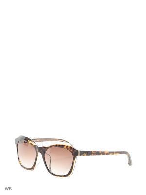 Солнцезащитные очки TO 0162F 50F Tod's. Цвет: коричневый, прозрачный