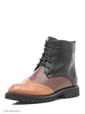 Ботинки Lisette. Цвет: черный, коричневый