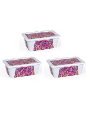 Комплект контейнеров из 3х шт. ПЕЙСЛИ прямоугольный с декором, 0,9 л. Полимербыт. Цвет: фиолетовый