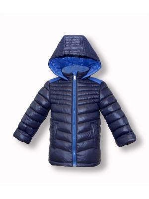 Куртка Артус. Цвет: темно-синий