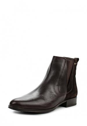 Ботинки Natalia Blanco. Цвет: коричневый