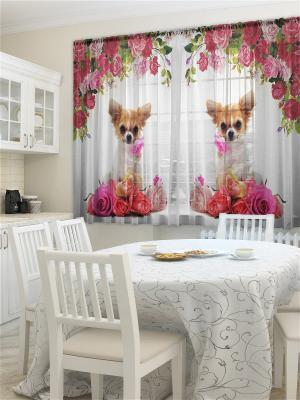 Фототюль для кухни Розочка ZLATA KORUNKA. Цвет: розовый