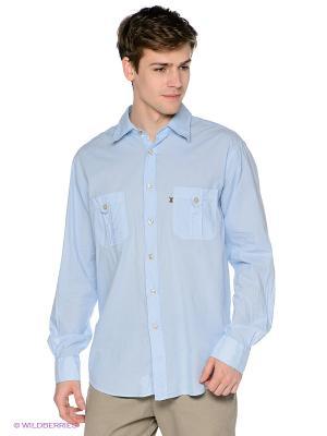 Рубашка Navigare. Цвет: голубой