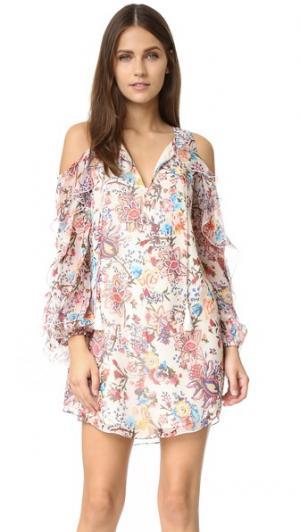 Платье с открытыми плечами Flowers in the Sun Haute Hippie. Цвет: цветочный узор «павлиний глаз»