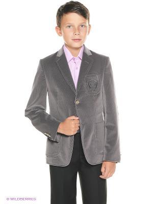 Пиджак Cascatto. Цвет: серый