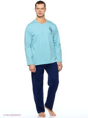 Комплект одежды Vienetta Secret. Цвет: голубой
