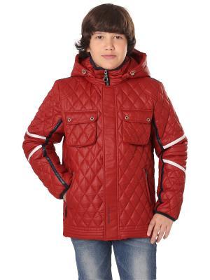 Куртка Корнет OVAS. Цвет: красный