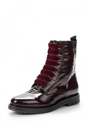 Ботинки Mascotte. Цвет: бордовый