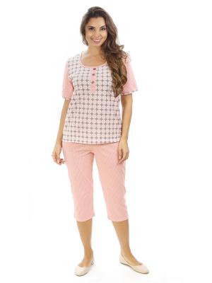 Костюм с бриджами Алтекс.. Цвет: светло-коричневый, белый, розовый, светло-бежевый, светло-коралловый